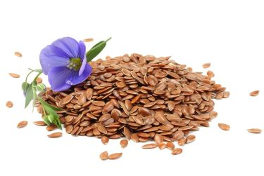 Linseed flax seeds with flower